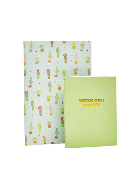 2-pack of notebooks
