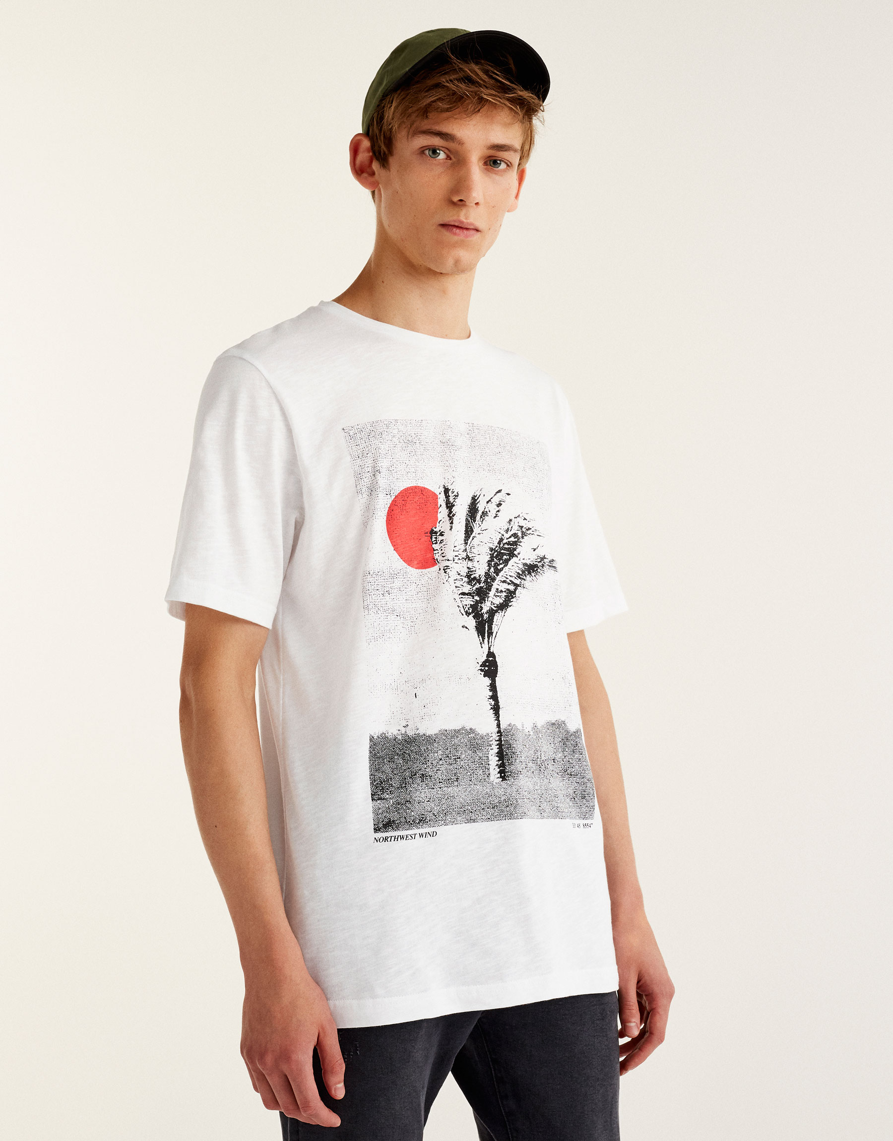 T-shirt with photographic palm tree print