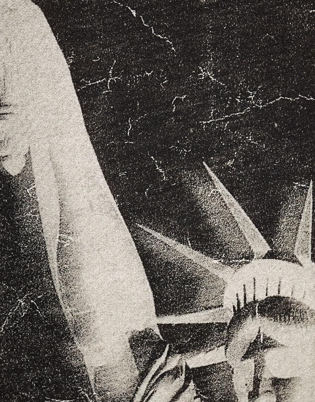 Camiseta print fotográgico estatua libertad