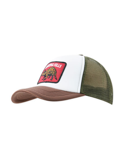 Mesh cap dinosaur patch