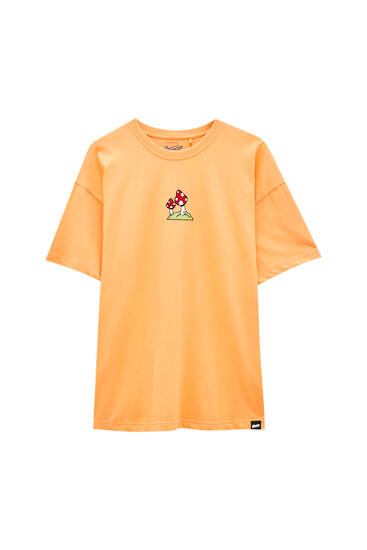 Coloured T-shirt with embroidered detail